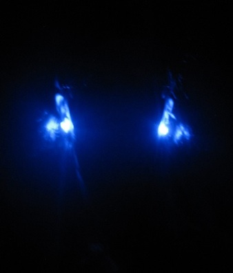 LED earrings blue alien